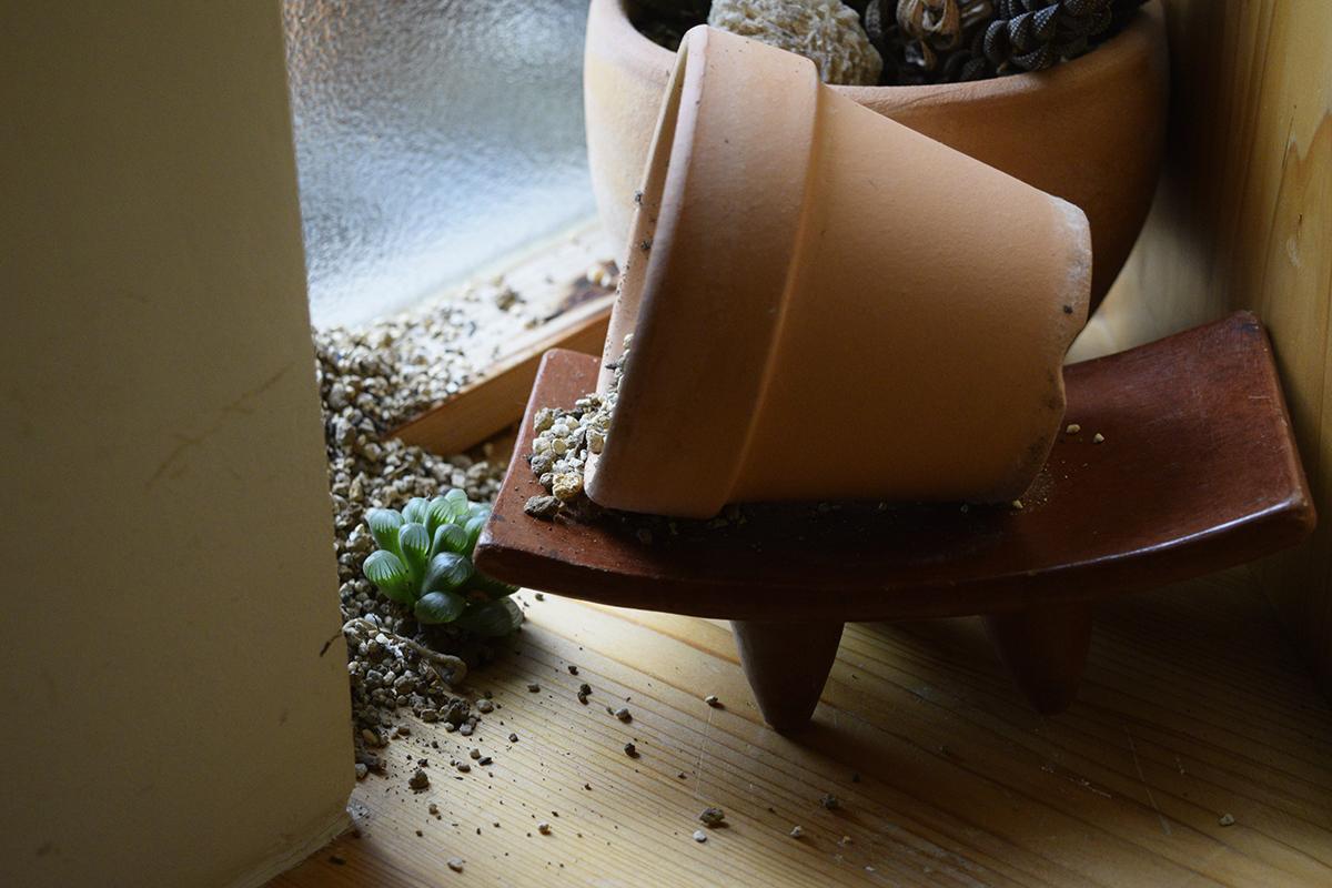 ひっくり返された植木鉢