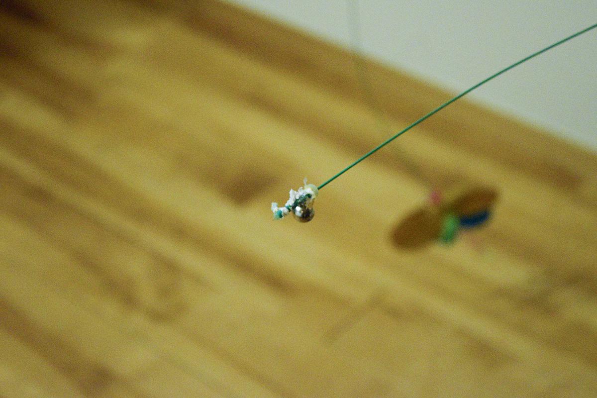 キジトラ猫の虎ノ介のおもちゃを壊したサバトラ猫の春太