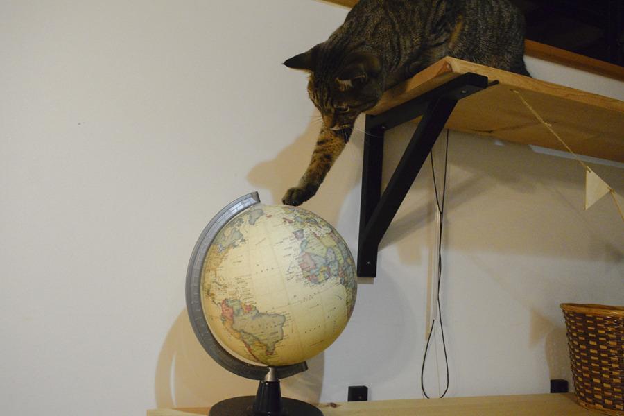 地球儀を指さす虎ノ介