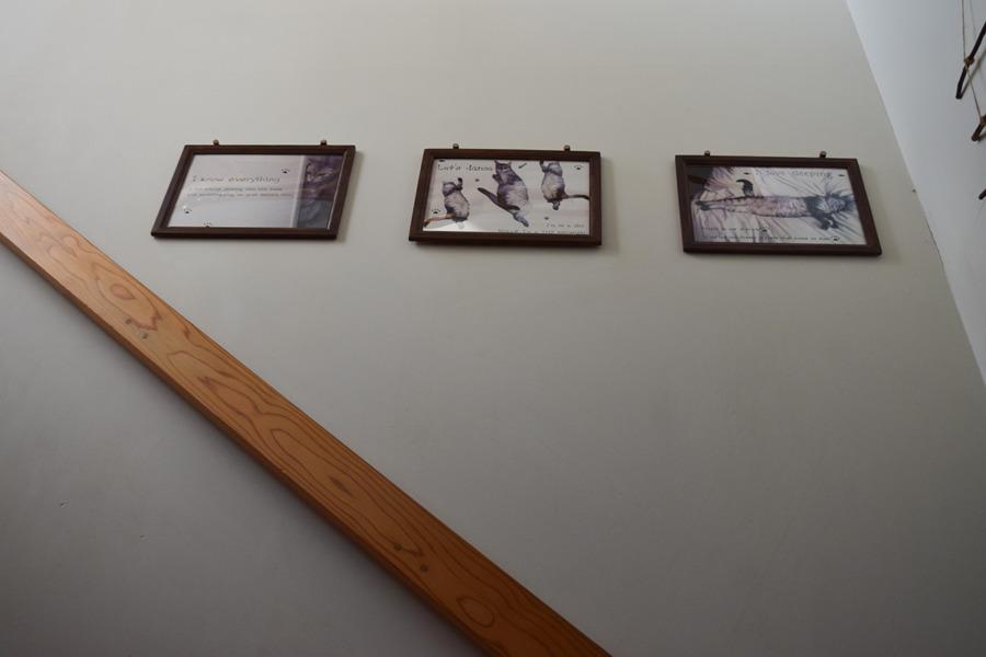 壁に飾られた3枚の写真