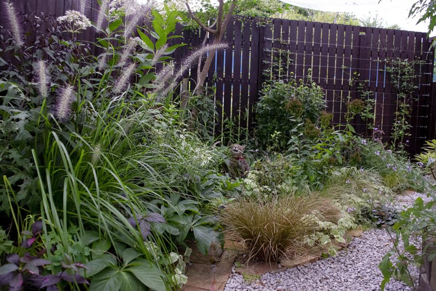 庭の中にいる虎ノ介